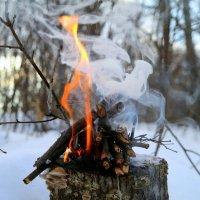 Хорошо в морозный день погреться у костерка! :: Андрей Заломленков