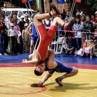 Когда иные аргументы бессильны.... :: Андрей Головкин
