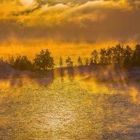 Золотой туман морозного дня :: Фёдор. Лашков