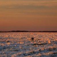 Рассвет над Амуром и рыбаки. :: Виктор Иванович