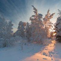 Солнечная дорожка :: Михаил Потапов