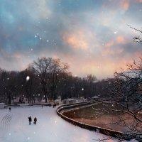 Тихий зимний вечер :: Наталья Понтус
