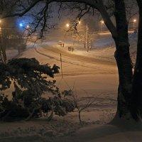 Зимняя ночь :: Сергей Тарабара
