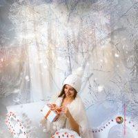 Снегурочка :: Андрей Володин
