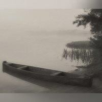 По туманным просторам... :: Людмила Павлова