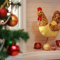 Символ грядущего года. )) :: Райская птица Бородина