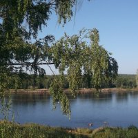 Река Свирь :: Svetlana Lyaxovich