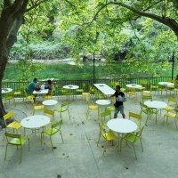 Столики под платанами на набережной Сорга :: Руслан Гончар