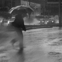 Ливень.... Человек  дождя.. :: Валерия  Полещикова