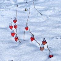 снег и разбитое сердце :: юрий иванов