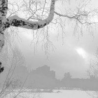 зима в городе :: elena manas