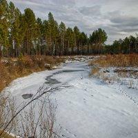 Протока в плену зимы :: Евгений Карский
