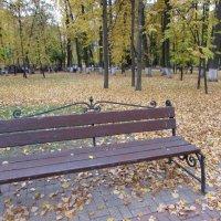 В осеннем парке :: Валюша Черкасова