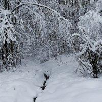 Снежный октябрь :: Милешкин Владимир Алексеевич