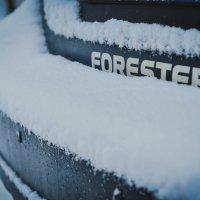winter :: Влад