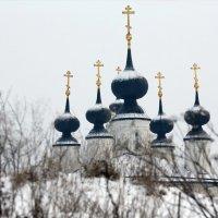 Белопесоцкий монастырь :: Михаил Бибичков
