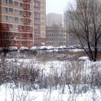 А снег идет... :: Елена Семигина