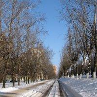 Зимний город :: Grey Bishop
