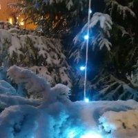 В зимней сказке :: Mariya laimite
