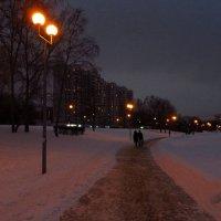 Декабрьский вечер на пруду :: Андрей Лукьянов