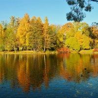 Там,где живёт очарование... :: Sergey Gordoff