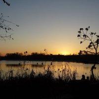Закат в ноябре... :: Тамара (st.tamara)