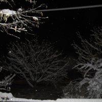 Длинна зимняя ночь. :: Вячеслав Медведев