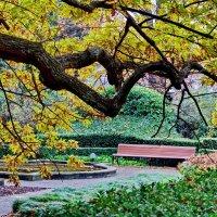 В ботаническом саду :: Vladimir Lisunov