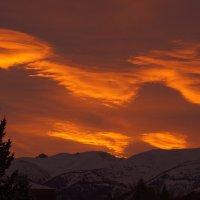 облака на рассвете... :: Alexandr Staroverov