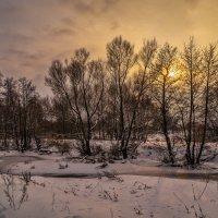 Начало зимы 3 :: Андрей Дворников