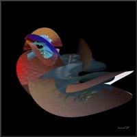 мандаринка) :: linnud
