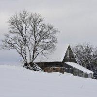- Одинокий дом - :: Ольга Шалина