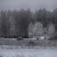 серебро :: Геннадий Федоров