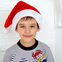 Помощник Деда Мороза :: Ксения