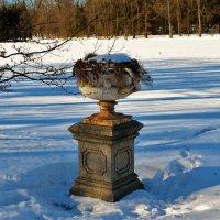 Старинная ваза на Острову... :: Sergey Gordoff