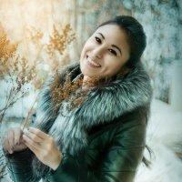 Зимняя атмосфера :: Anna Albert