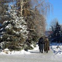 Морозный день :: Татьяна Смоляниченко