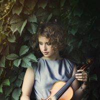 Скрипка :: Елена Пахомычева