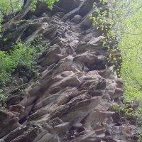 Фигура волка посредине из камней :: Антонина Владимировна Завальнюк
