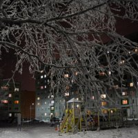 Двор и девятиэтажный дом  в зиму, где живем я и моя семья! Северодвинск, улица Коновалова д.20. :: Михаил Поскотинов