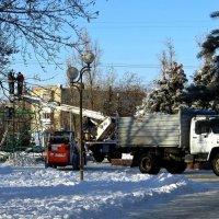Установка городской ёлки :: Татьяна Смоляниченко