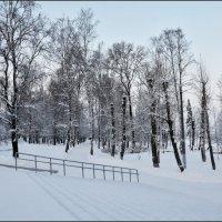 В старом парке :: Viktor Pjankov