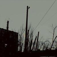 неожиданная зима :: Николай Семёнов