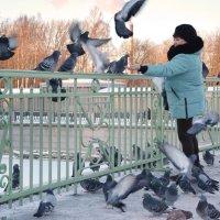 """Она хотела кидать корм уткам!!.."" :: Наталия П"