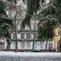 Первый снег. :: Андрий Майковский