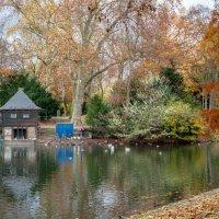 Осенний парк в центре Дюссельдорфа :: Witalij Loewin