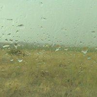 дождь :: Антонина Тыртышная (Гладких)
