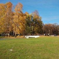 Золотая осень :: Константин Поляков