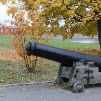 Осень в Кронштадте :: Ольга