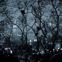 mystery night :: Олег Семенов